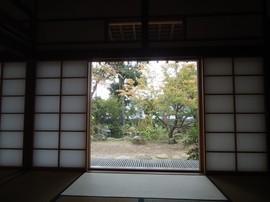DSC03351-s.jpg