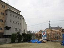 IMG_2705-s.jpg